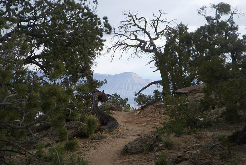 3 Western Colorado Hikes For When It S Over 90 Degrees Outside