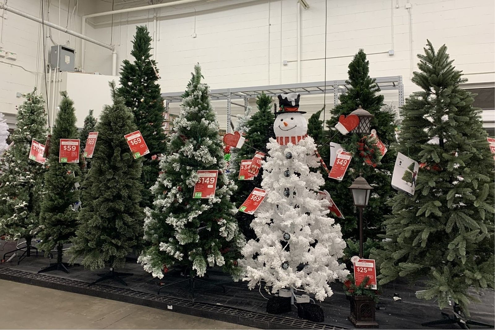 When To Put Up Christmas Decorations 2020 Grand Junction   Are You Ready to Put Up Christmas Decorations?