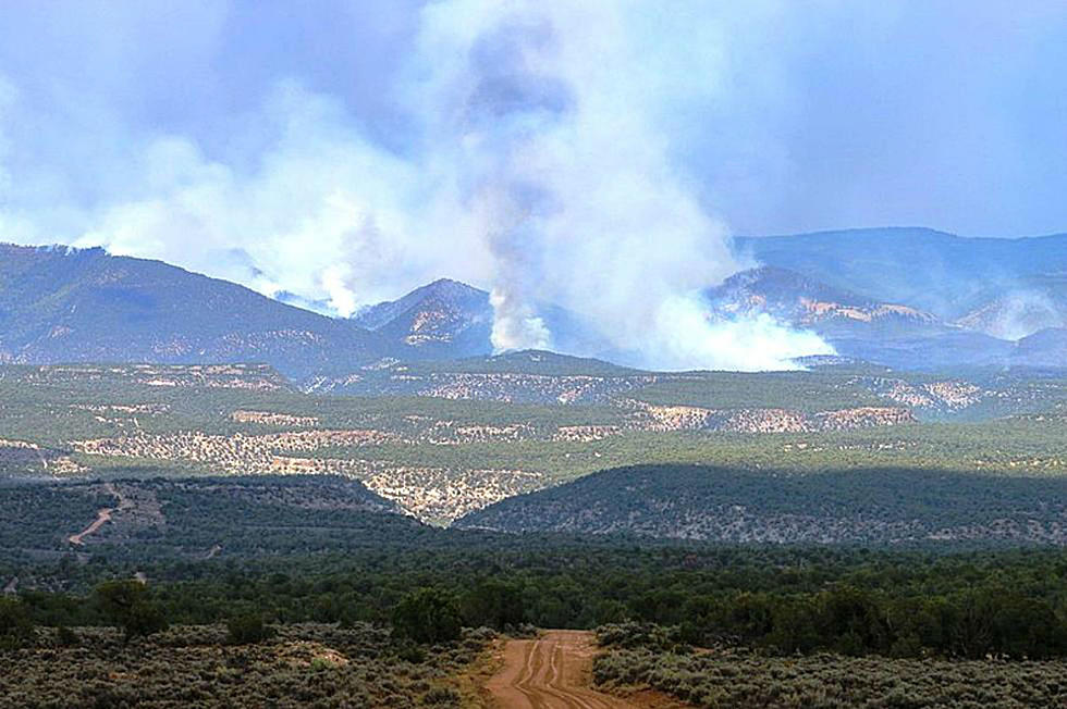 11 Wildfires Currently Burning in Colorado
