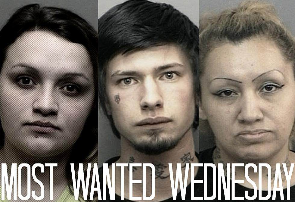 Most Wanted Wednesday - Larimer and Weld County [March 16]