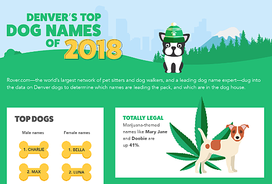 In 2018, More Coloradans Named Their Dogs After    Weed?