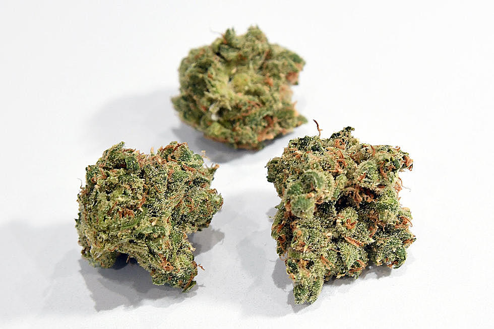 Colorado's Top 10 Highest THC Cannabis Strains