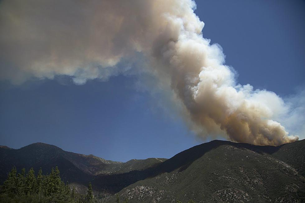 2019 Colorado Wildfire Preview