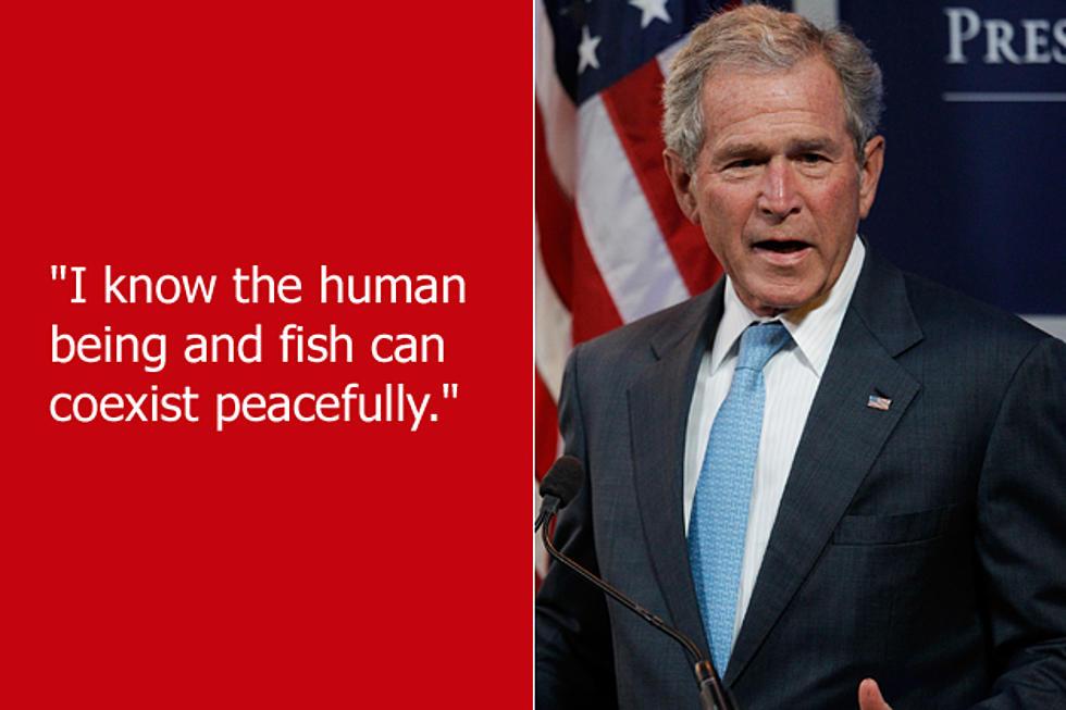 Dumb Celebrity Quotes – George W  Bush