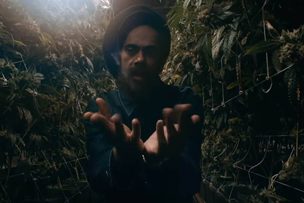 Damian Marley and Stephen Marley Turn a Prison into a Weed Farm in