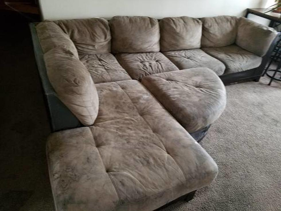 Wacky Free Stuff You Can Get Today on Tri-Cities Craigslist