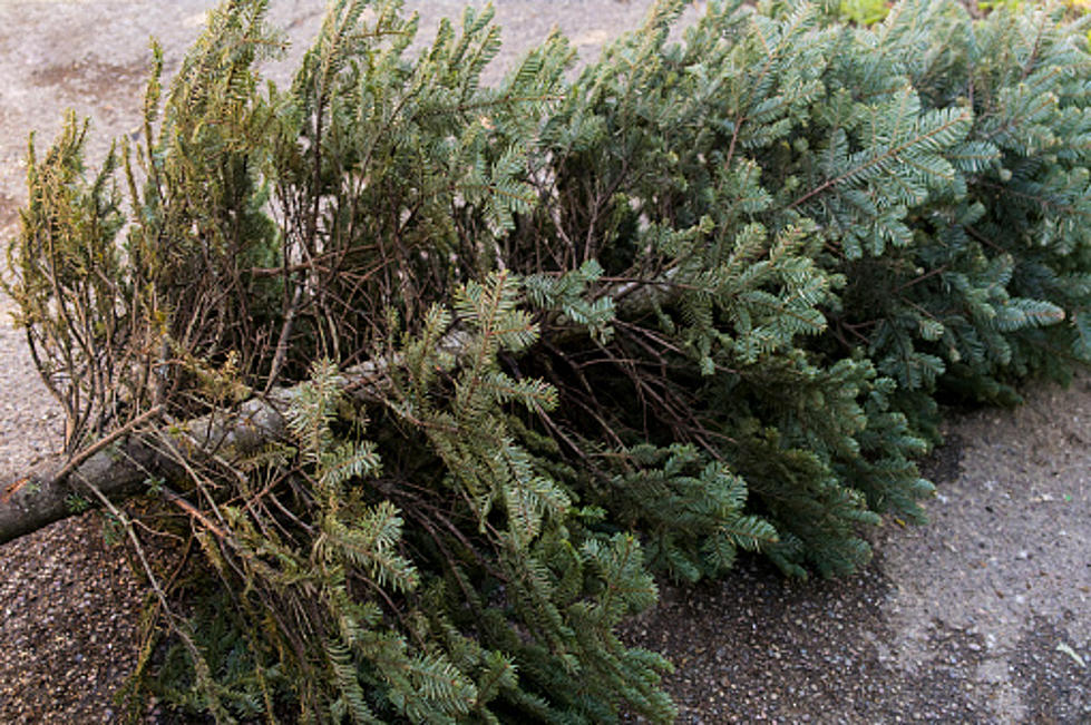When Should You Take Down Christmas Tree.When Do You Take Down The Christmas Decorations