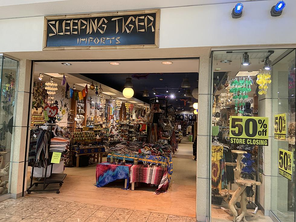 Sleeping Tiger Imports In Lakeview Square Mall Closing