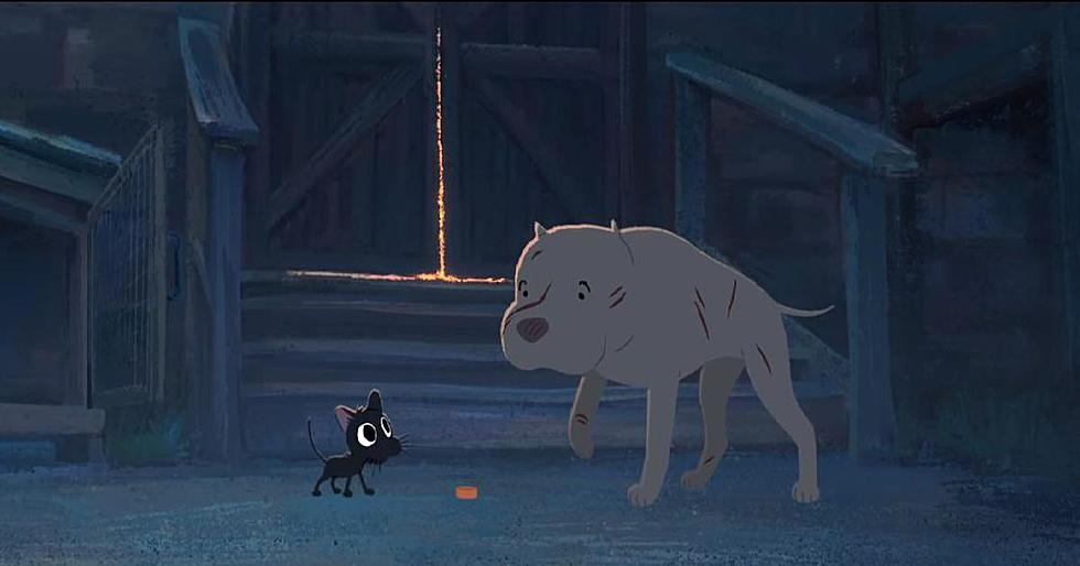 Pixar's 'Kitbull' Could Change your Life In Less Than 9 Minutes