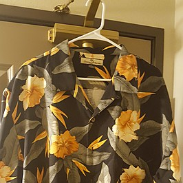 b1b6ca0aeb8 The Hawaiian Shirt, Chick Magnet or Birth Control?
