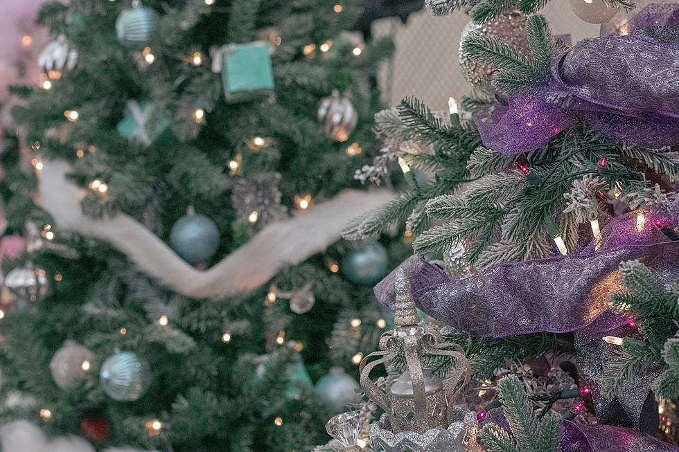 Canyon County Christmas Show 2020 2020 Canyon County Festival of Trees Canceled