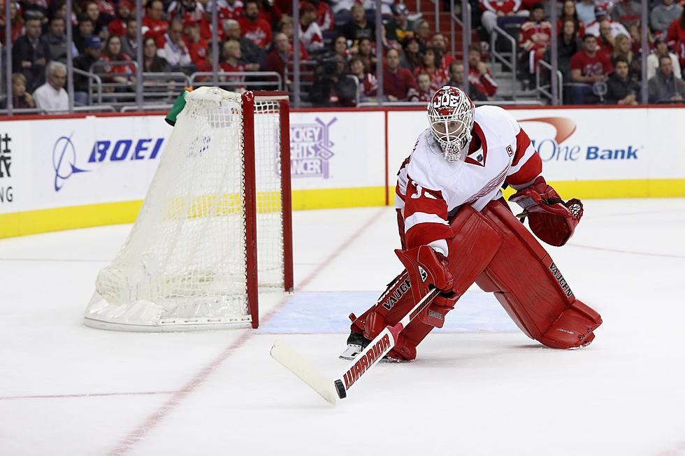 d138ab11e52 Red Wings Sign Jimmy Howard To Extension