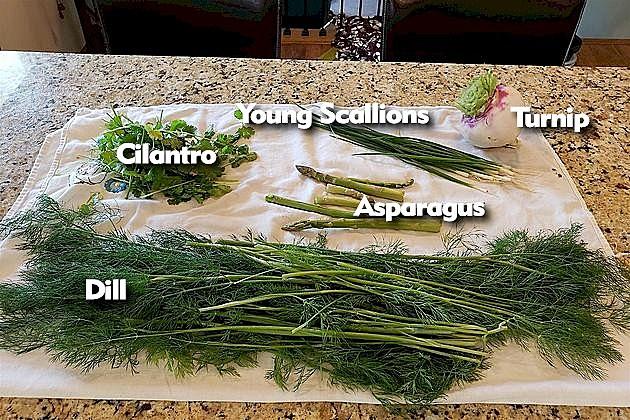 VeggieAnswers