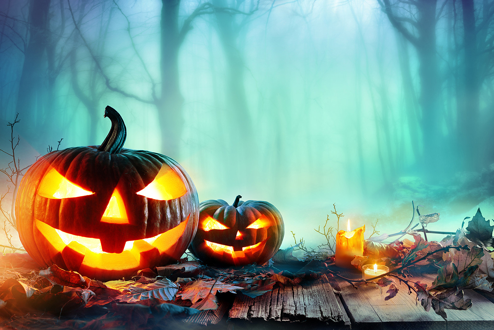 Fun Facts About Halloween 2019
