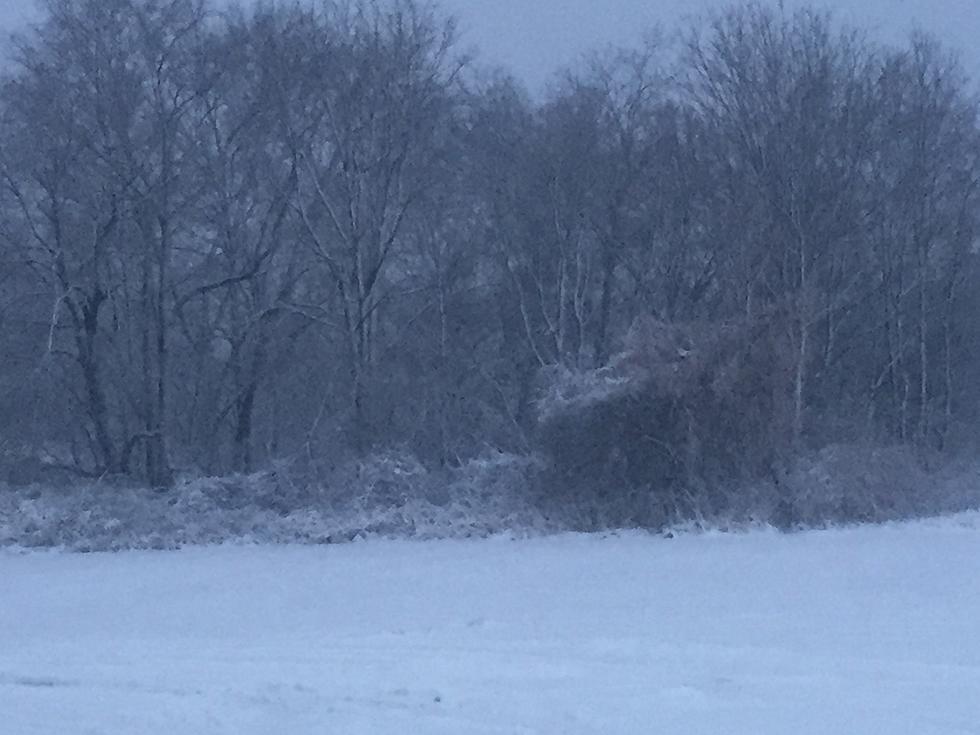Farmer's Almanac Has Released Its Winter Prediction For Michigan