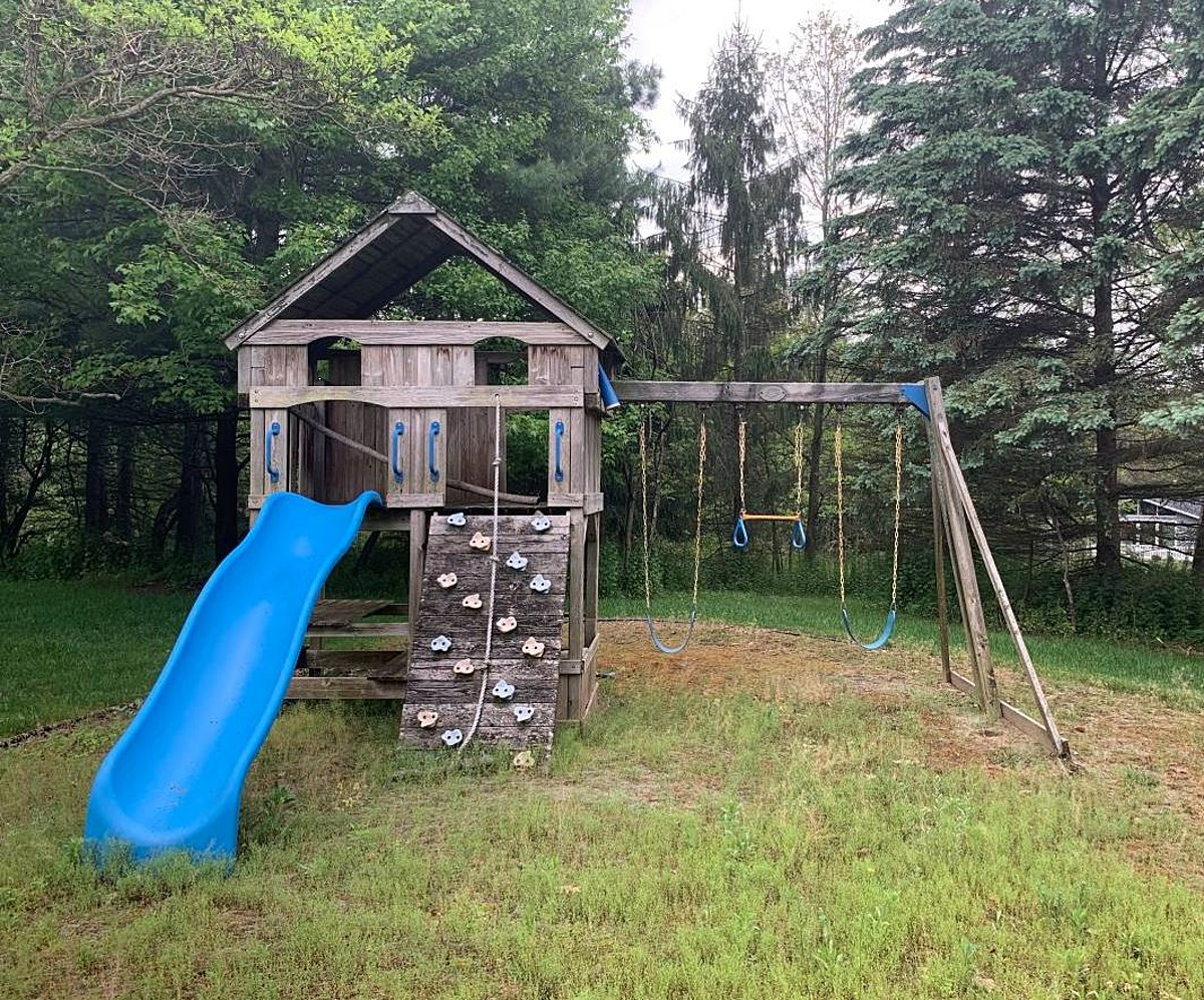 7 Coolest Free Items on Craigslist in S.W. Michigan - June ...