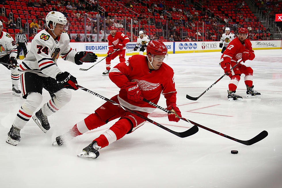 Schedule For Red Wings At The 2019 NHL Prospect Tournament