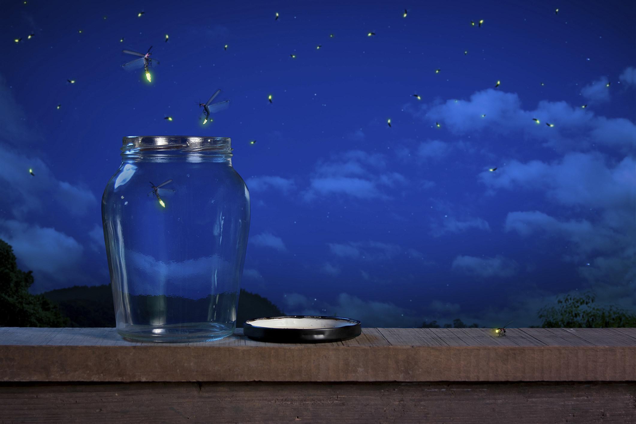 Firefly fergregory