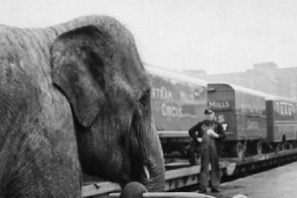 MICHIGAN HISTORY: The 1903 Circus Train Wreck in Durand