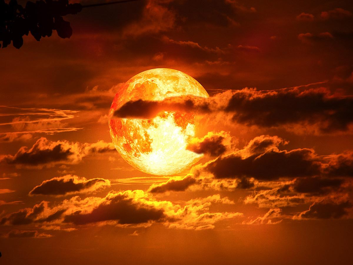 blood moon january 2019 michigan - photo #17