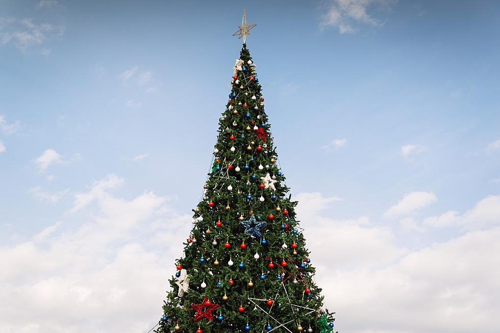 Christmas Michigan.A Cool Michigan Up North Christmas Tradition