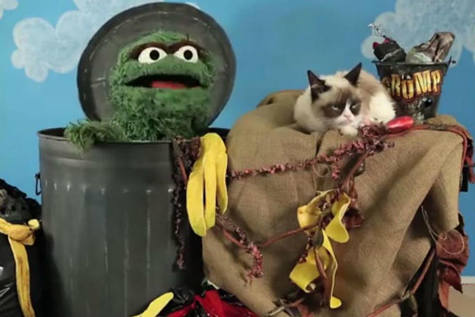 Oscar The Grouch Vs Grumpy Cat Video