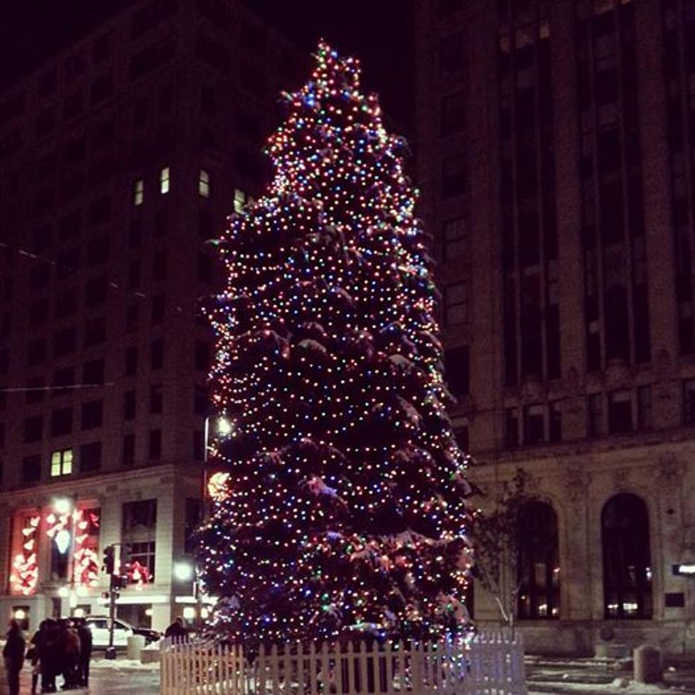 Portland Christmas Tree.Portland Downtown Wants Your Tree To Be This Year S