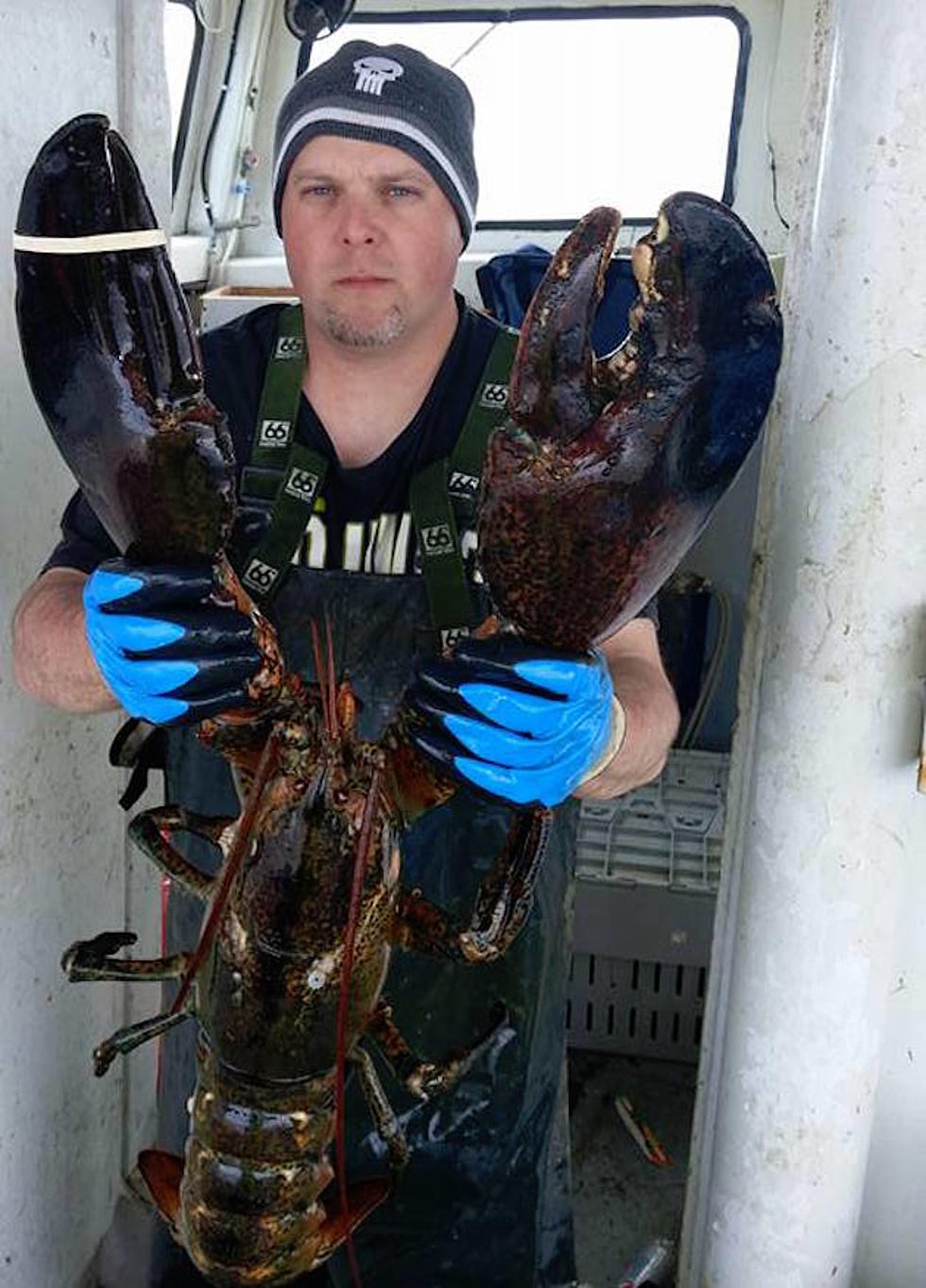 How Big Was The Biggest Lobster Ever Caught You Wont Believe It