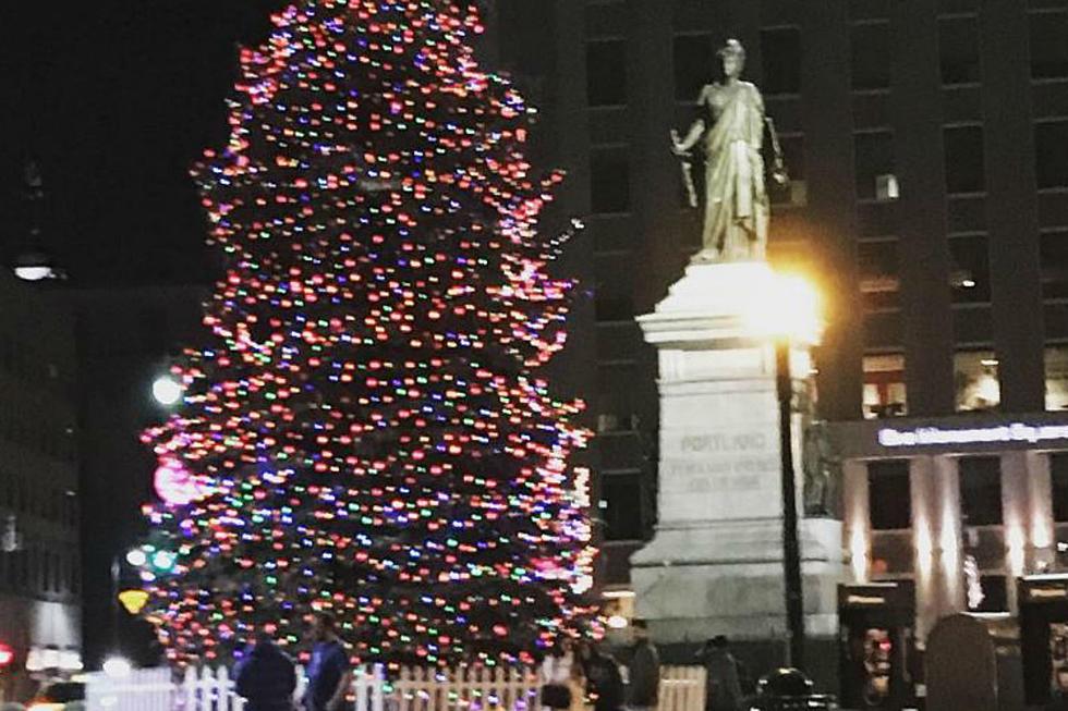 Portland Maine Christmas.Lights And Eggnog At The Portland Christmas Tree Lighting