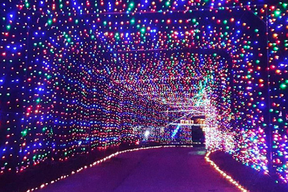 Drive Through An Incredible Tunnel Of Lights In New Hampshire