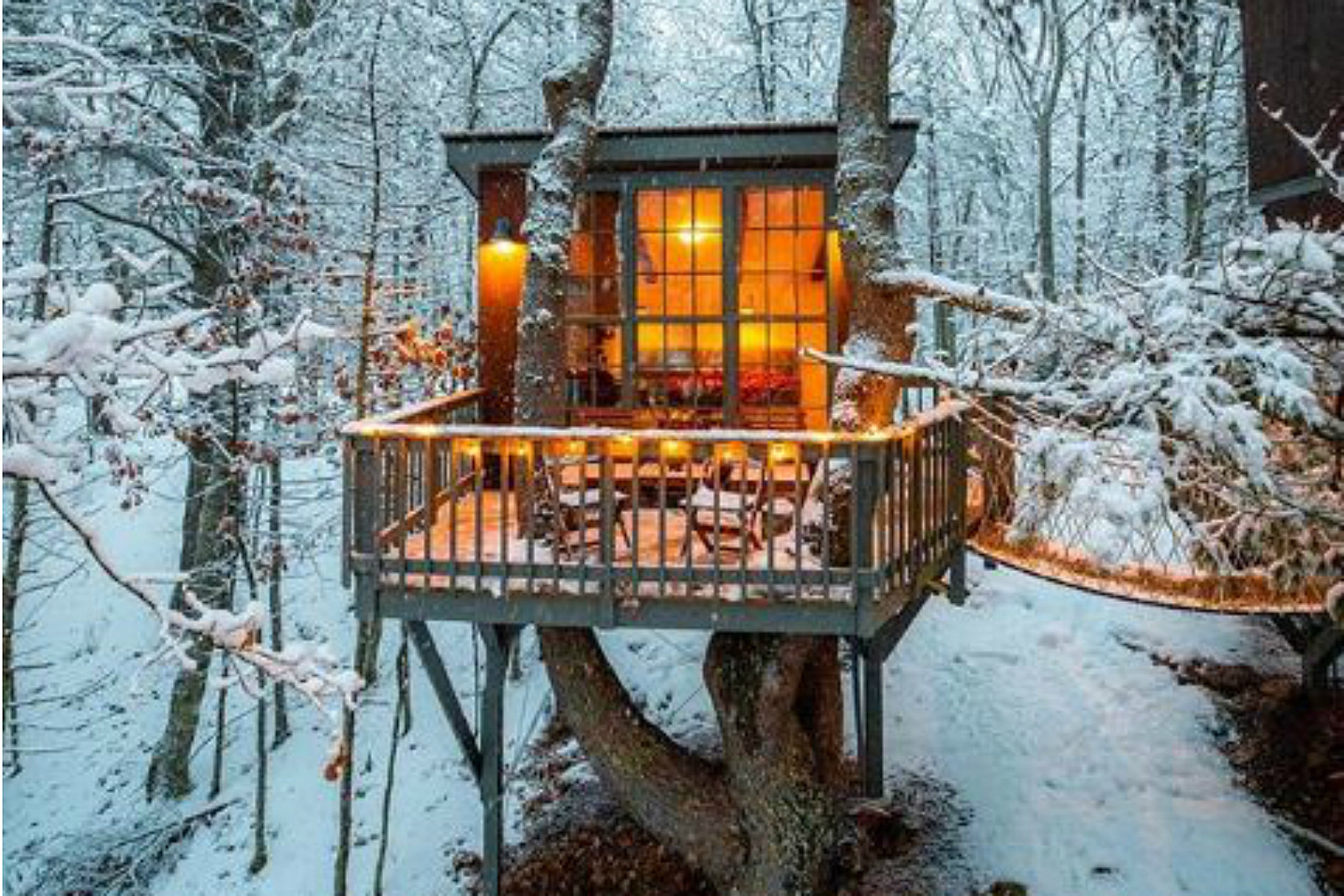Escape A Tree This Georgetown Is Me Winter House Magical In