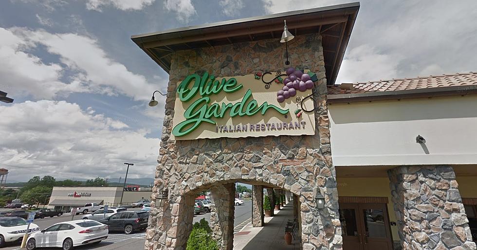 Hudson Valley Olive Garden Restaurant Announces Closure