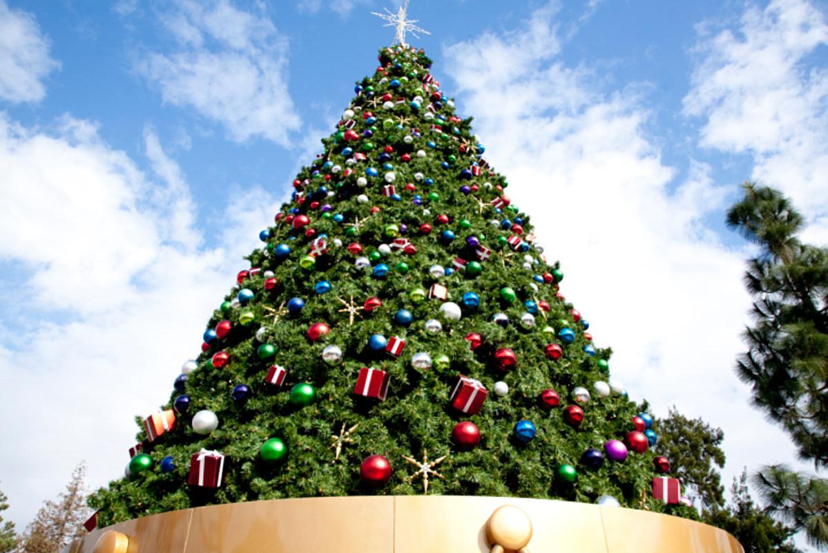 2019 Rockefeller Christmas Tree from ...