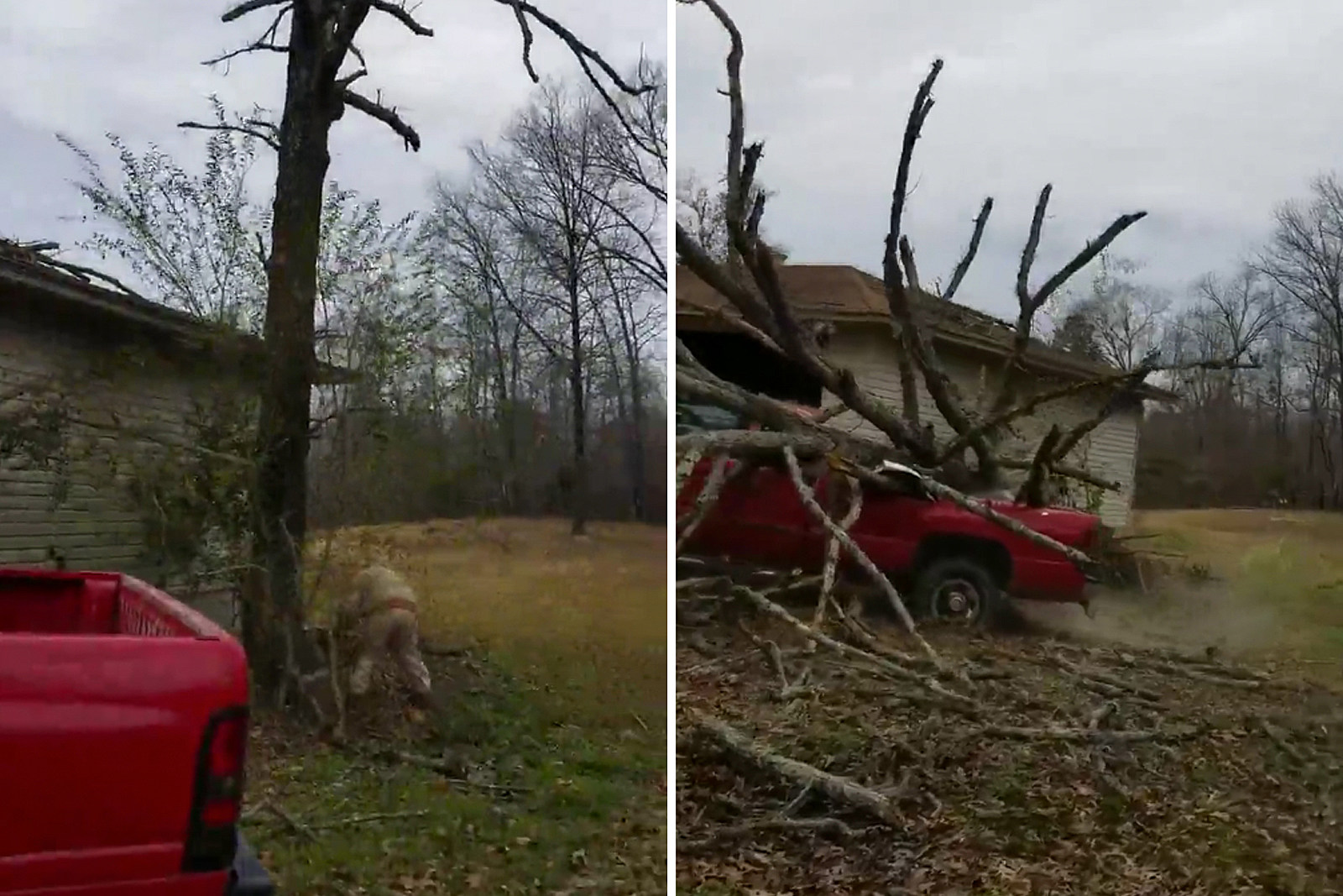 0be778406e12 Man Accidentally Chainsaws Tree Onto His Pickup Truck