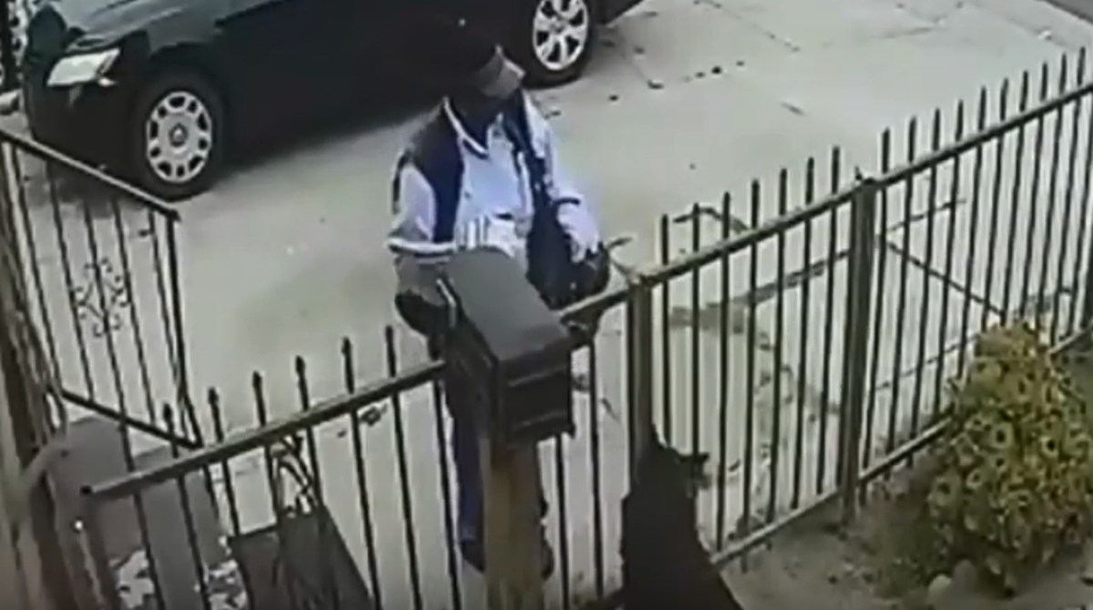 Mail Carrier Pepper Sprays A Dog For No Reason