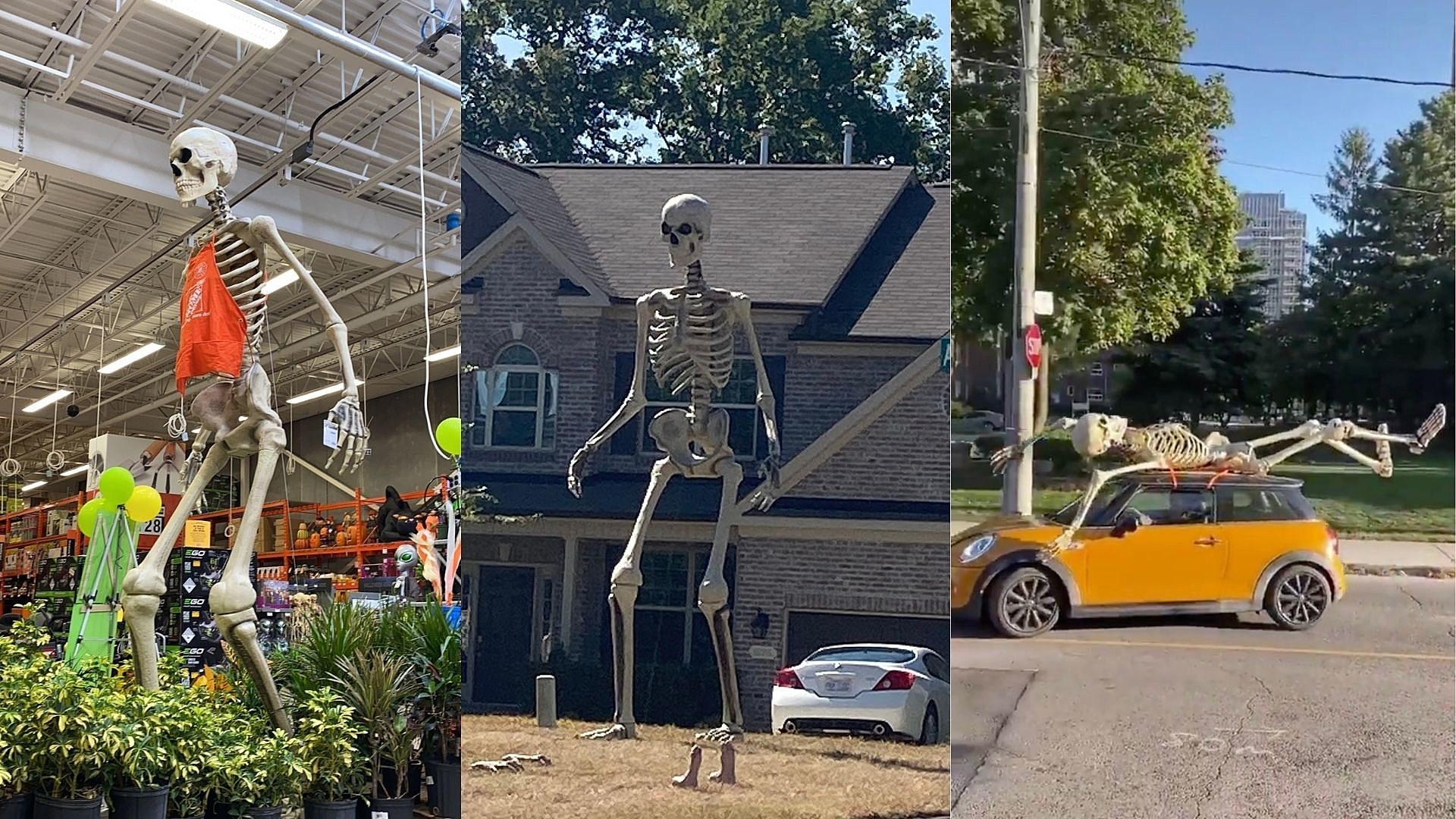 This 12 Foot Skeleton From Home Depot Has To Be The Best Decoration This Year
