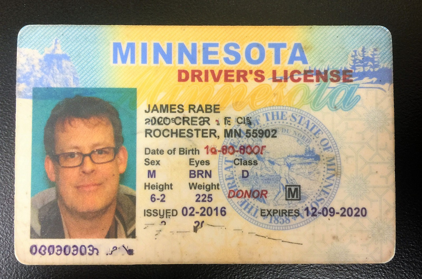 new mn drivers license requirements