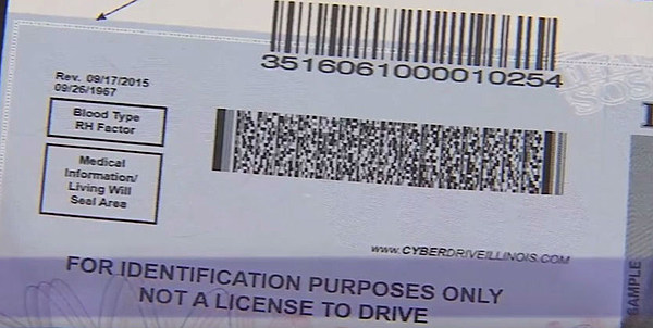 illinois to issue paper driver's licenses this summer