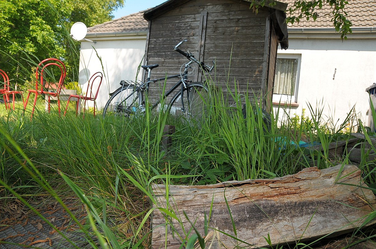 Win a $2,500 Front Yard Makeover Here