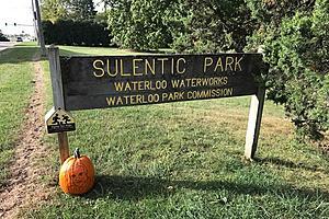 Neuman The Pumpkin And The Waterloo Road Trip