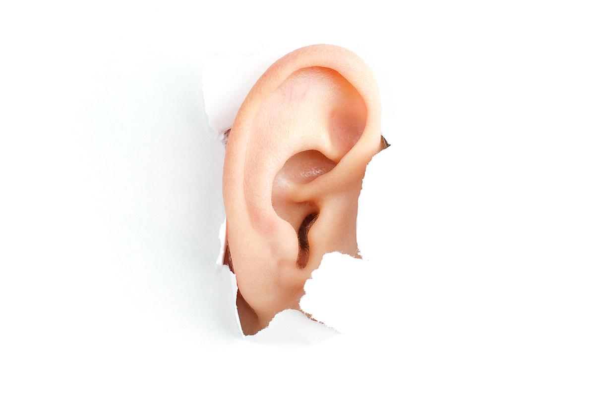 Картинка прикольных ушей, надписями