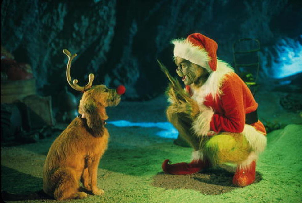 How The Grinch Stole Christmas 2000 Whos.You Ll Never Believe Who Narrates The How The Grinch Stole