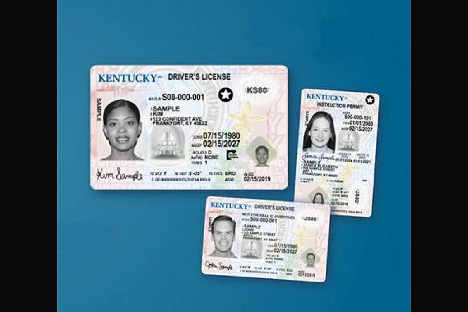 hall county nebraska drivers license