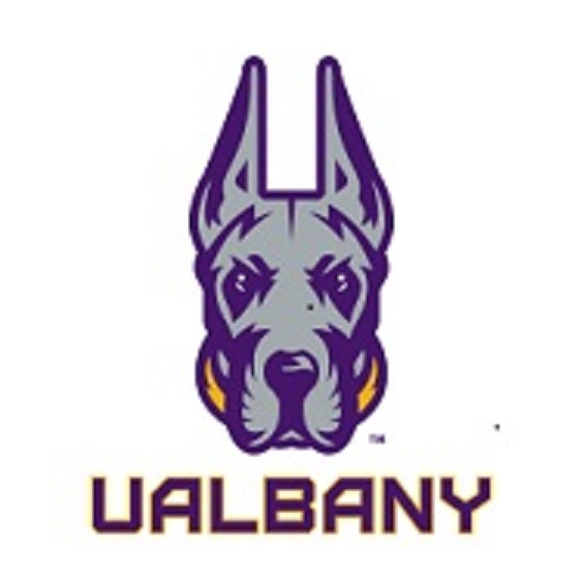 CAA Announces 2021 UAlbany Football Schedule