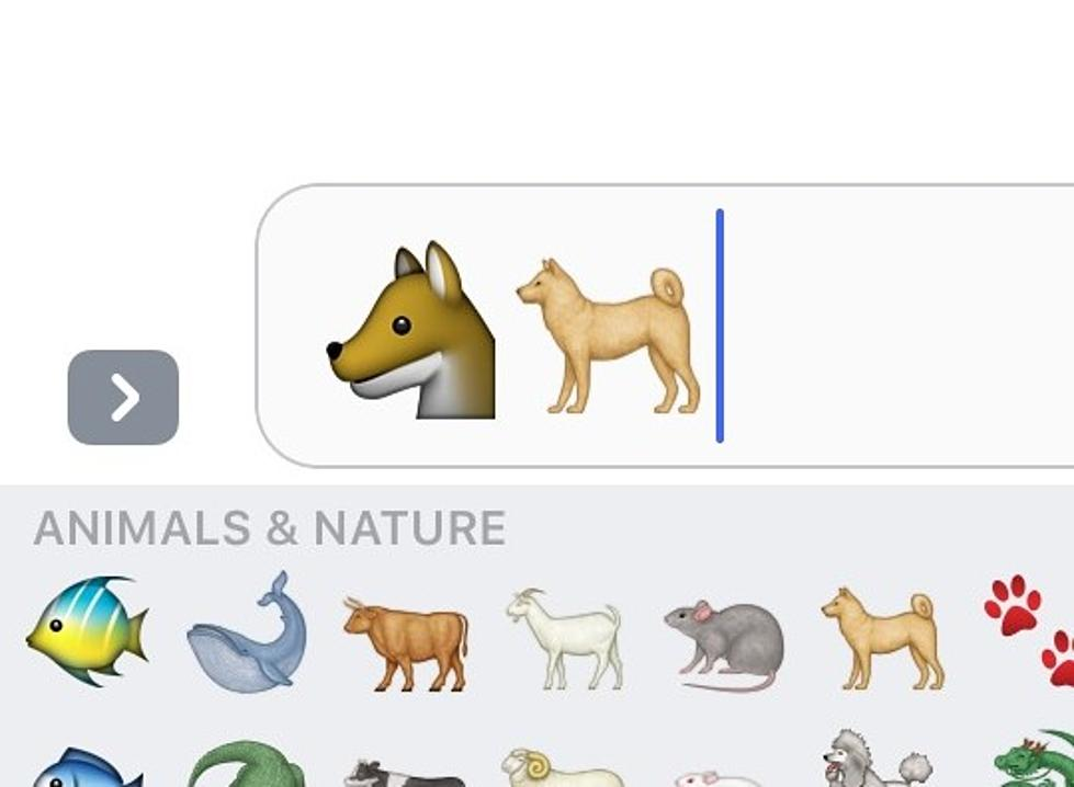What Breed is the iPhone Dog Emoji?