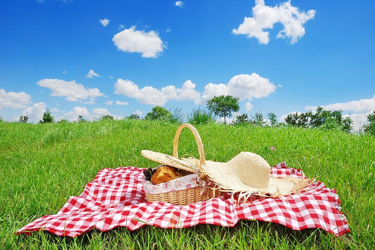 картинки пикник на траве лучше