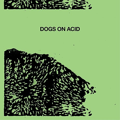 Dogs on Acid