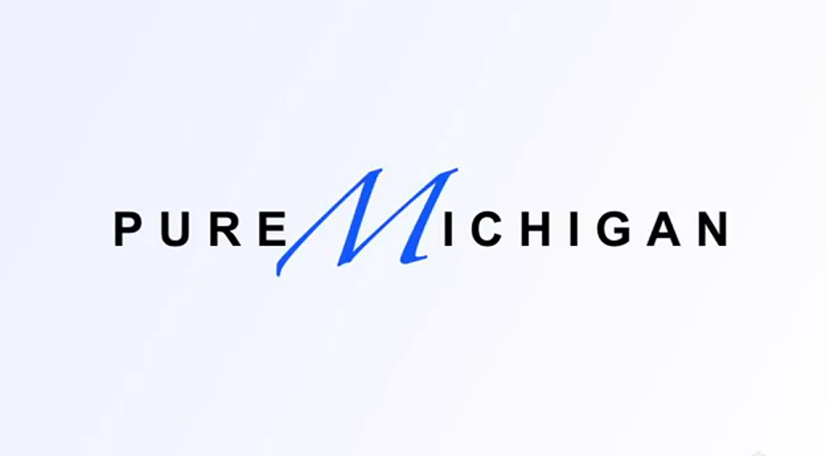Pure Michigan: Wisconsin And Ohio Spoof
