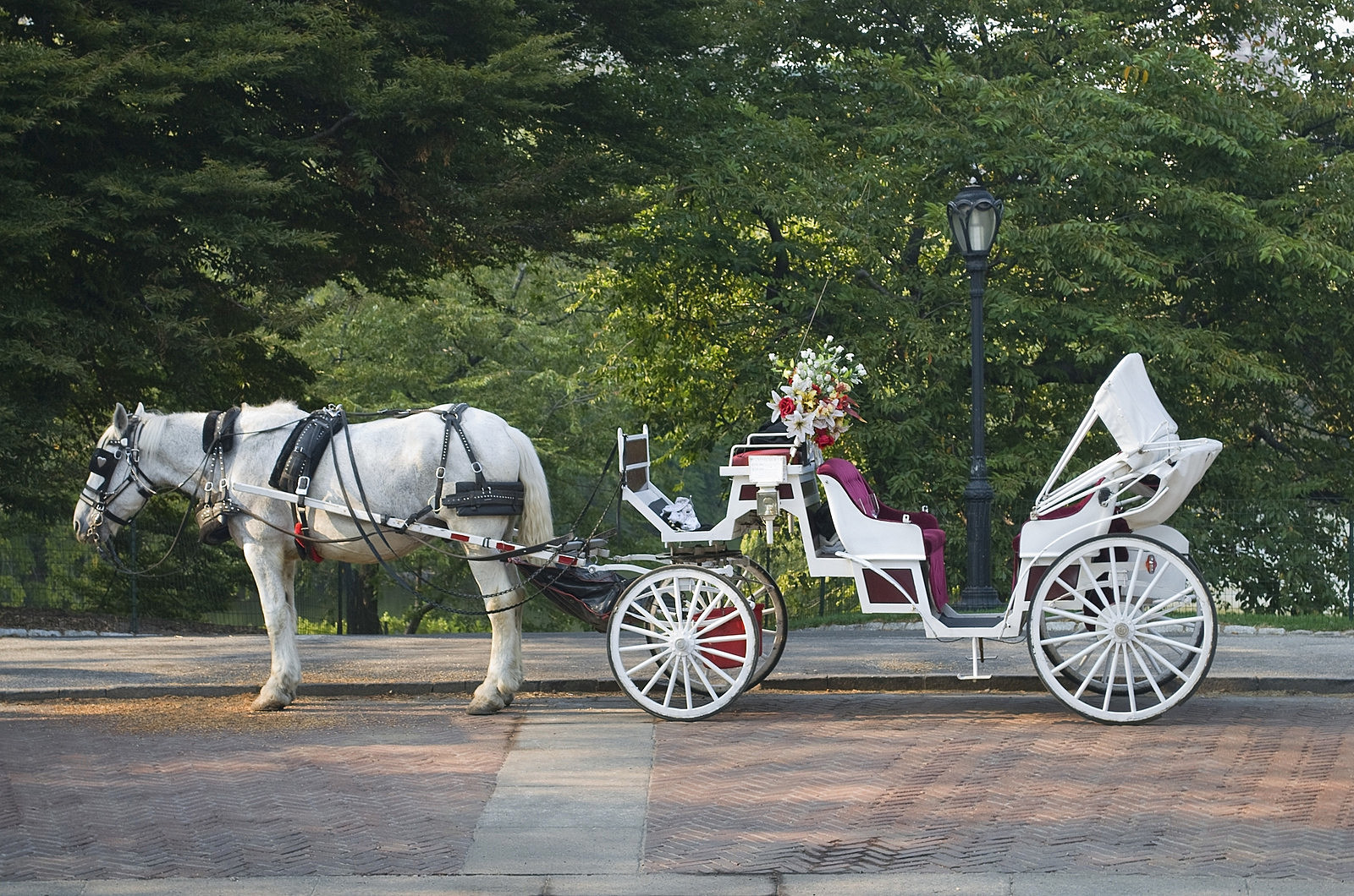 The White Horse Inn Of Metamora Offering Free Carriage Rides In December