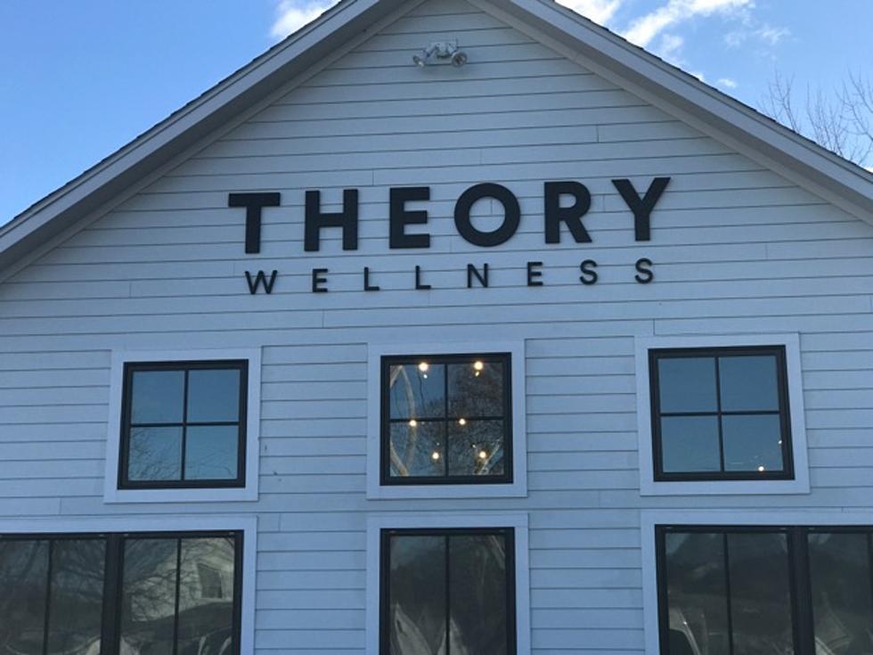 Legal Marijuana: Tour Theory Wellness Great Barrington (Photos)